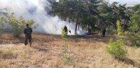 Пожар на площ от 300 декара гори до Симеоновград