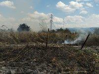 Пожар избухна в автоморга край Пловдив (Снимки)