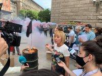 снимка 2 Мая Манолова запали протоколи от изборите пред ЦИК
