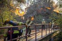 Евакуираха близо 8000 души заради пожари в Калифорния