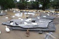 снимка 2 Наводнения, боклуци и разрушени пътища след урагана Хана в Мексико (Снимки)