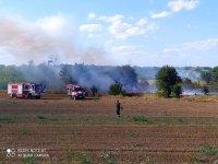 """Пожар унищожи 50 тона фураж близо до АМ """"Хемус"""""""