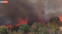 """Затвориха участък на АМ """"Марица"""" заради голям пожар край Харманли"""