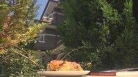 """Плажуващи оставиха баница и книга с афоризми на оградата на резиденцията в """"Росенец"""""""