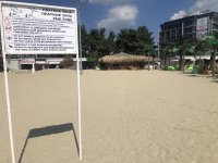 снимка 1 Чироз замени семките на плажа в Слънчев бряг (Снимки)