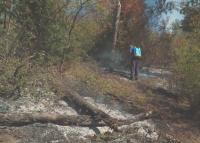 Локализиран е пожарът край първомайското село Искра