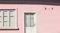 Тежкотоварен трафик руши пътища и къщи в Добротица