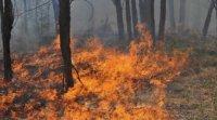 Рискът от пожари остава висок за страната и днес