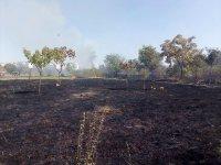 Пожар горя на метри от жилищни блокове в Пловдив