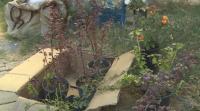 Доброволци разчистват междублокови пространства във Варна