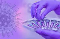 Заради техническа грешка в информационната система: Обявиха оздравял от коронавирус за починал