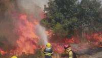 Огнена стихия бушува в Галисия