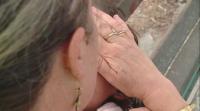 Кампания търси приемни семейства в Пловдив