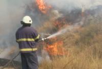 Остава динамична ситуацията с пожара между Хасково и Стара Загора