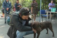 Искате ли куче? Животните от приюта в Бургас ви очакват