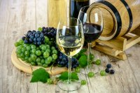 """""""Августиада 2020"""" събра почитатели на вино и кулинарни изкушения в Стара Загора"""