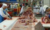 Ново огнище на коронавирус в германска кланица с български работници