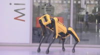 Робот-куче замества хората при опасни задачи