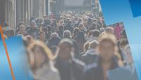 Над 245 000 са безработните у нас. Какво се търси на пазара на труда?