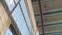 Над 300 деца спортуват в зала с течащ покрив в Асеновград
