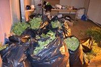 След разбиването на нарколабораторията в Горна Оряховица: Двама задържани и готова продукция за 70 000 лв.