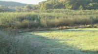 Буйна гора е заличила пълноводен язовир край Русе