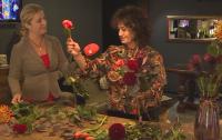 Какво ни говори езикът на цветята