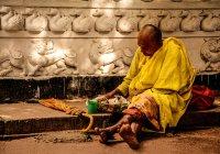 Още 132 милиона души може да станат гладуващи заради пандемията COVID-19