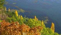 снимка 3 Панчаревското езеро - популярен маршрут за разходка