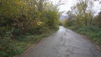 След намесата на БНТ: Черешовица ще има вода за пиене и ремонтиран път
