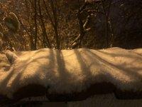 снимка 11 Първи сняг в София (Снимки)
