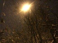 снимка 10 Първи сняг в София (Снимки)