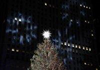 Запалиха светлините на елхата пред Рокфелер център