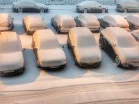 снимка 3 Първи сняг в София (Снимки)