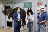 """Шер посрещна """"най-самотния слон в света"""" в Камбоджа"""