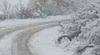 Камиони закъсаха на пътя Русе - Силистра заради летни гуми