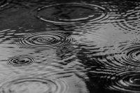 168 л/кв.м се изсипаха в Златоград, валежите продължават и следобед
