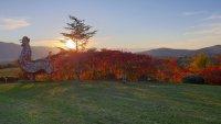 """Тази събота в """"Европейци"""": Родопската идилия на село Устина"""