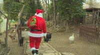 Дядо Коледа посети Варненския зоопарк