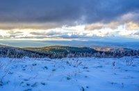 снимка 4 Витоша - любимо място за разходка и през зимата