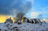 снимка 11 Витоша - любимо място за разходка и през зимата