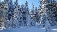 Температури до минус 49 градуса в Сибир