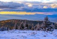 снимка 6 Витоша - любимо място за разходка и през зимата