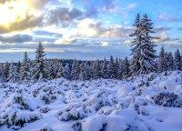 снимка 13 Витоша - любимо място за разходка и през зимата