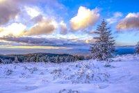 снимка 5 Витоша - любимо място за разходка и през зимата