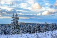 снимка 12 Витоша - любимо място за разходка и през зимата