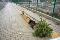 Защо пропадна наскоро обновен тротоар в столицата?