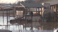 Продължава отводняването в Бургаско