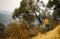 снимка 2 Опасност от пожари заради горещините в Австралия