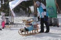 Снежен фестивал на Витоша